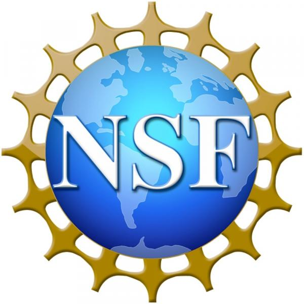 Holmes receives NSF Postdoctoral Fellowship